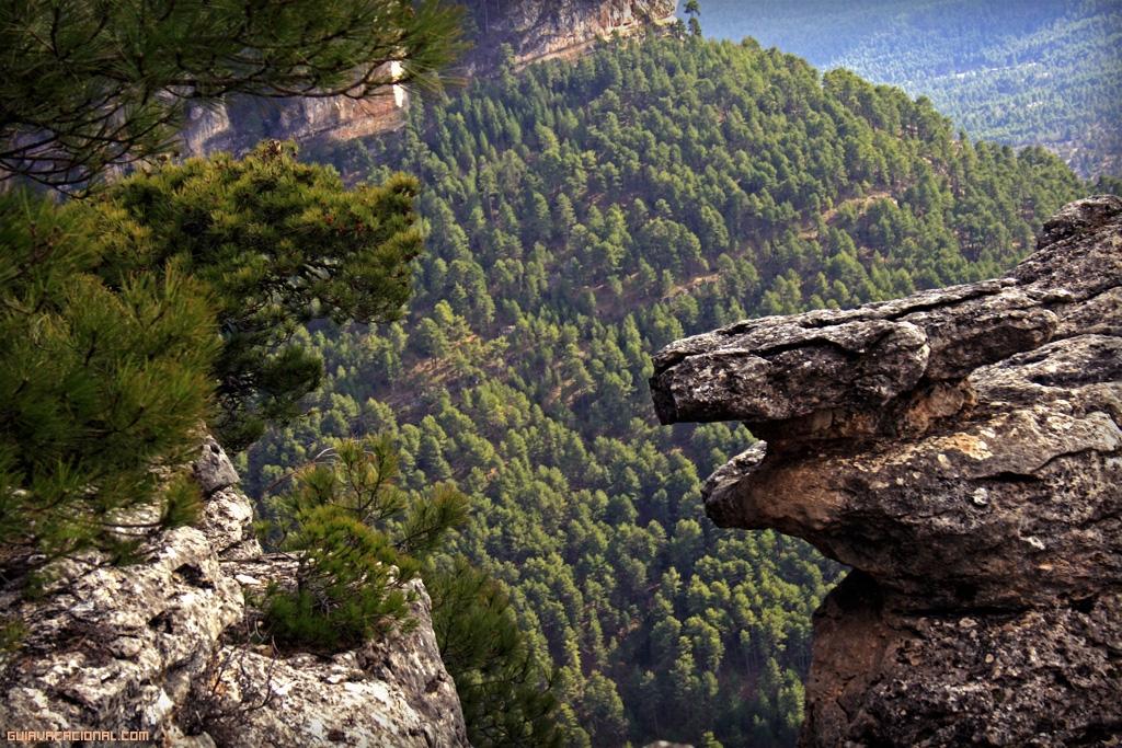 Serrania-de-Cuenca-vacaciones