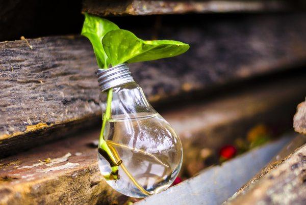 Reciclar es una necesidad prioritaria - Reciclamás