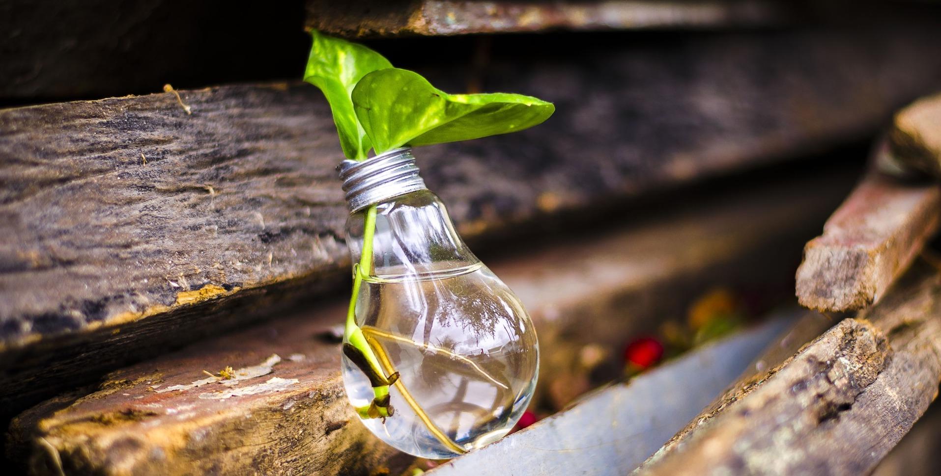 Reciclar es una necesidad prioritaria