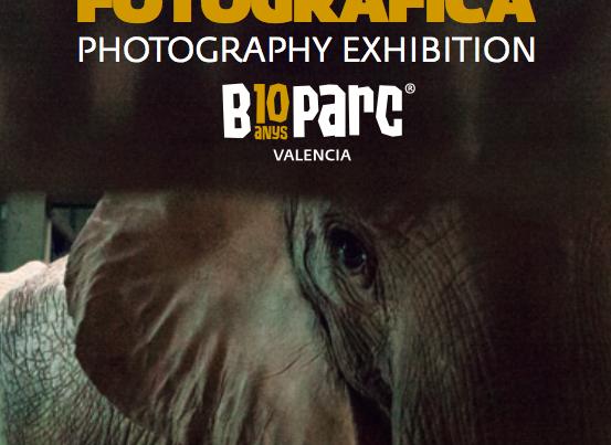 Reciclamás y Bioparc juntos en una exposición fotográfica por la defensa del medioambiente