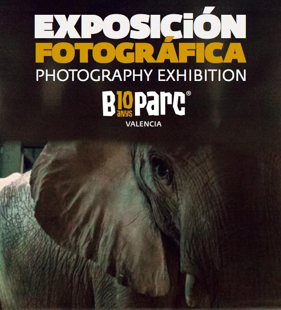 Reciclamás y Bioparc juntos en una exposición fotográfica
