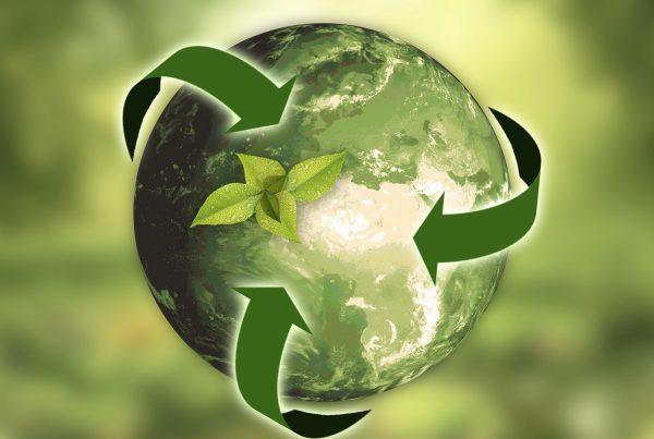 El reciclaje en la economía circular