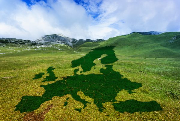 El Pacto Verde Europeo, un impulso para la economia circular