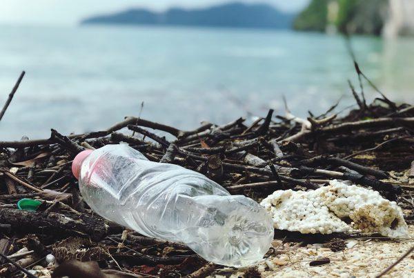 Anteproyecto de la nueva ley de residuos