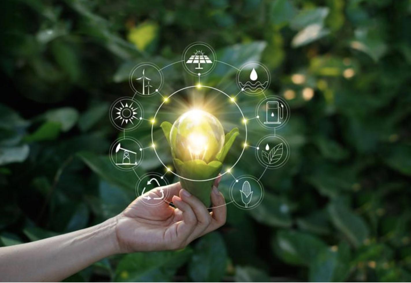 Descubre las 7Rs de la economía circular