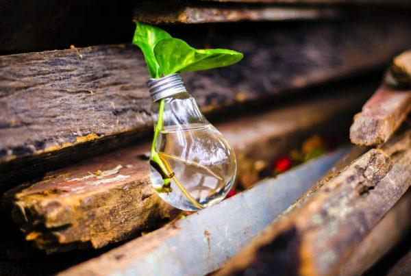 El MITECO destina 500 millones de euros para impulsar la economía circular