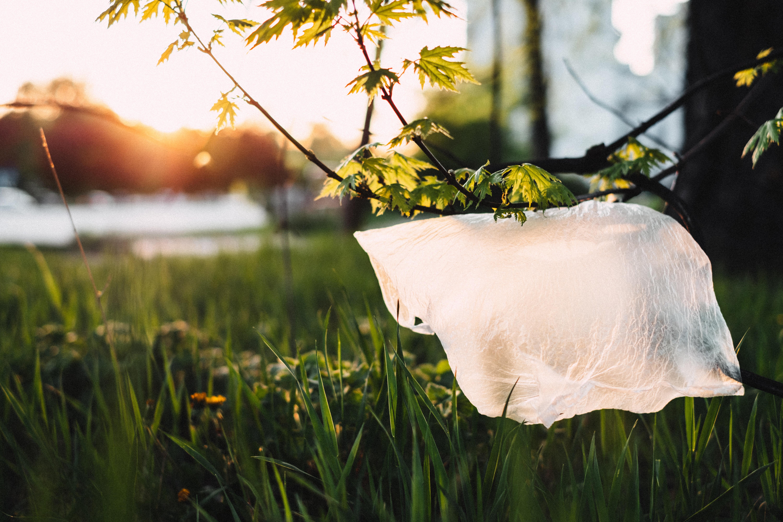 El reciclaje como solución a la acumulación de plásticos