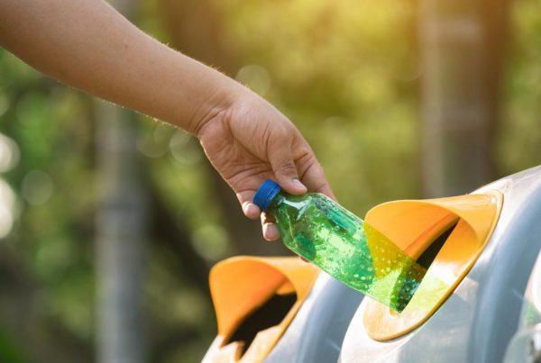 Beneficios de las sociedades que reciclan