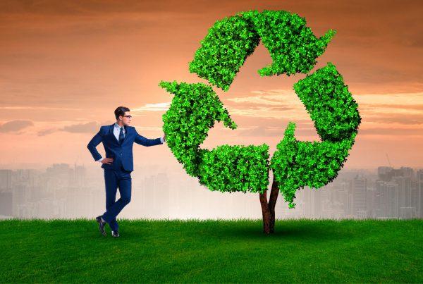 Reciclamás-participa-en-el-E-Workshop-sobre-la-sostenibilidad-celebrado-por-el-VCF-Business