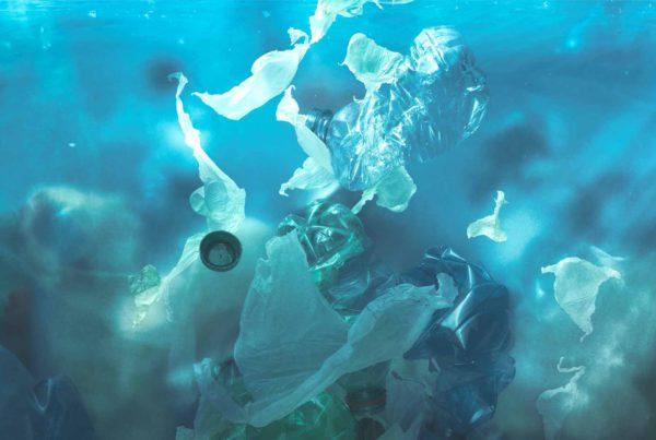 4 consecuencias del plástico en el mar.